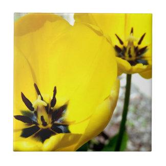 Teja de cerámica de la foto del tulipán amarillo