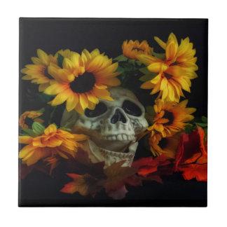 Teja de cerámica del cráneo y de la foto de las