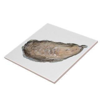 Teja de la ostra - blanco del diseño D