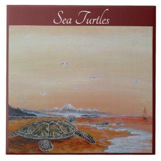 Teja de la tortuga de mar. Las tortugas de mar se
