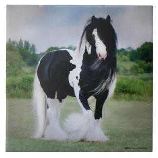 "Teja del caballo de ""Tessa"""