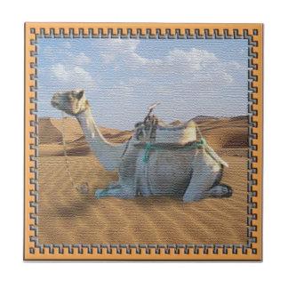 Teja del camello