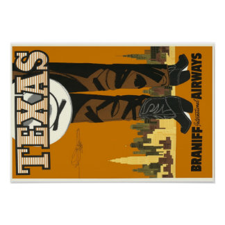 """Tejas 19"""" x 13"""", papel de poster del valor (mate)"""
