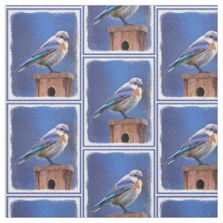 Tela Bluebird (femenino)