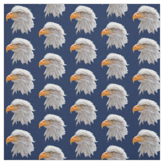Tela de Alaska de Eagle calvo (marina de guerra)