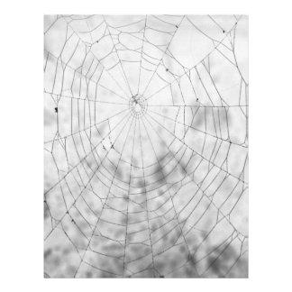 Tela de araña tarjetas informativas