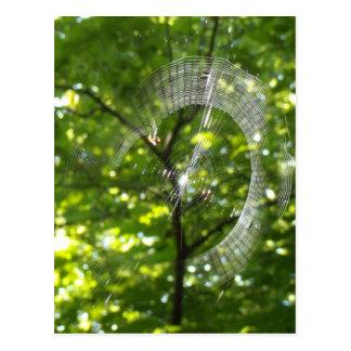 Tela de araña postal