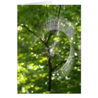 Tela de araña tarjeta de felicitación