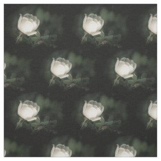 Tela Dogrose blanco en un fondo oscuro