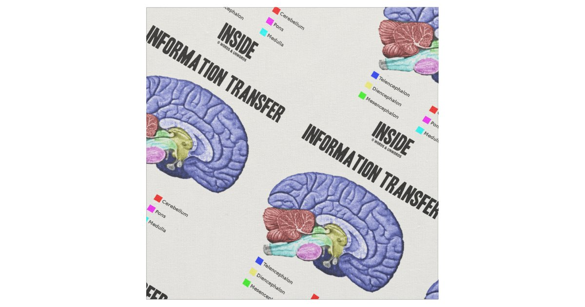 Tela Humor interior de la anatomía del cerebro de la | Zazzle.es