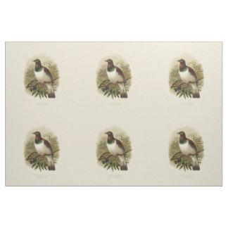 Tela Pájaros de la ciencia NZ del vintage - Kereru