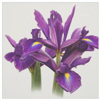 Tela Sensación elegante de la púrpura del iris holandés
