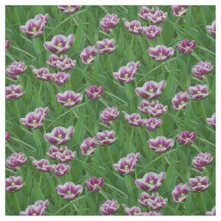 Tela Tulipanes púrpuras y blancos