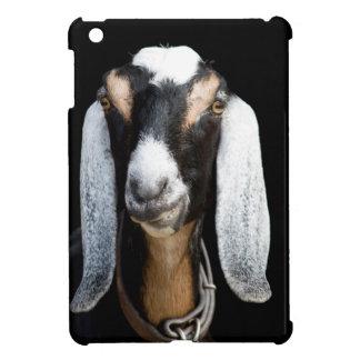 Tenemos su cabra