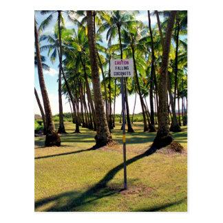 Tenga cuidado para los cocos de Faling - postal