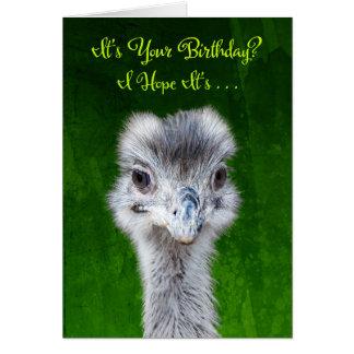 Tenga un cumpleaños de Emusing - Emu Tarjeta De Felicitación