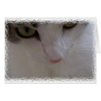 Tengo solamente ojos para usted tarjeta de felicitación