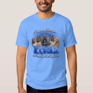 Tengo un sueño, ninguna legislación del específico camisas
