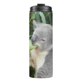 Termo Koala que come la hoja de la goma