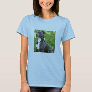 terrier americano del pitbull camiseta