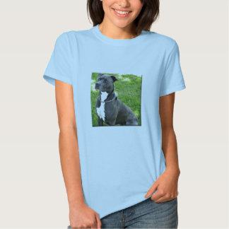 terrier americano del pitbull camisetas
