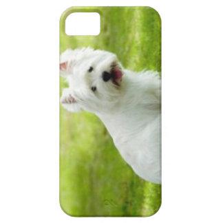 terrier escocés funda para iPhone SE/5/5s