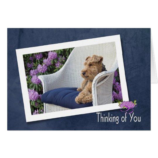 Terrier galés que piensa en usted tarjeta de felicitación