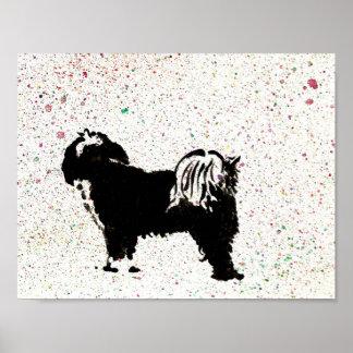 Terrier tibetano - mirando hacia fuera póster