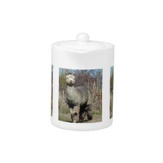 Tetera Alpaca