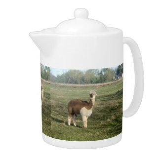 Tetera Brown y alpaca blanca