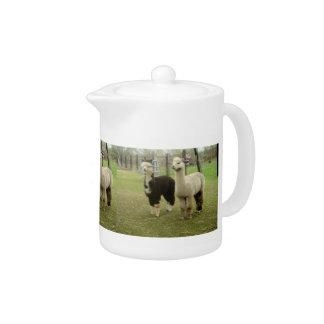 Tetera Dos alpacas