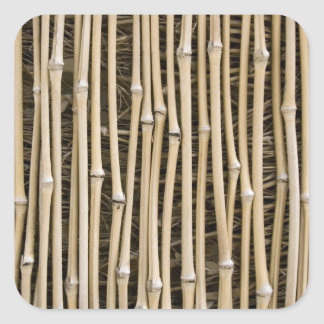 Textura de bambú pegatina cuadrada