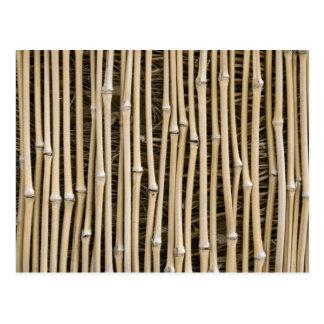 Textura de bambú postal