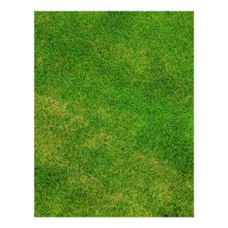 Textura de la hierba verde folleto 21,6 x 28 cm