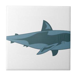 Tiburón Azulejo