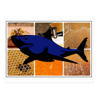 Tiburón de la miel postal