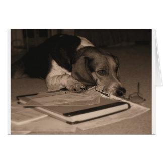 Tiempo del impuesto - foto de CPA del perro del Tarjeta De Felicitación