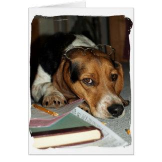 Tiempo del impuesto - perro del beagle tarjetas