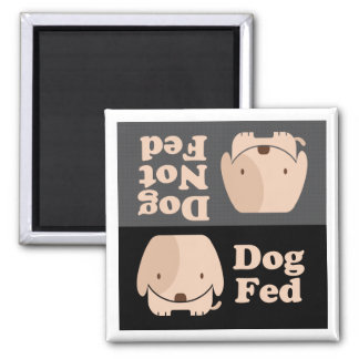 Tiempos de la comida de FED del perro de FED del Imán
