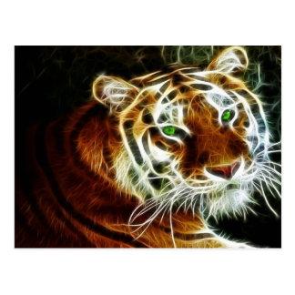 Tigre 3 postal
