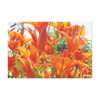 Tigre anaranjado Lillies Lienzo