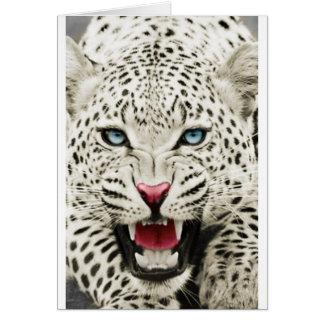 tigre blanco en el vagabundeo tarjeta de felicitación