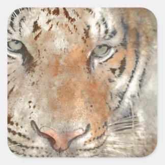Tigre cercano para arriba en acuarela pegatina cuadrada