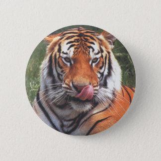 Tigre Chapa Redonda De 5 Cm