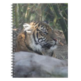 Tigre Cuaderno