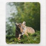 Tigre Cub Alfombrilla De Raton