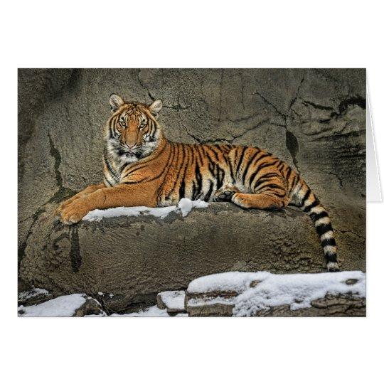 Tigre Cub escultural Tarjeta De Felicitación