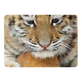 Tigre Cub Invitación 12,7 X 17,8 Cm