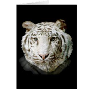Tigre de Bengala blanco Tarjeta De Felicitación