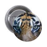 Tigre de Sumatran Pins